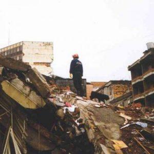 Unidad Canina Método Arcón interviniendo en terremoto Turquía